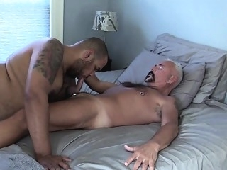 Ebony Robert Barebacks Daddy Stew blowjob (gay) fat gays (gay) gays (gay)